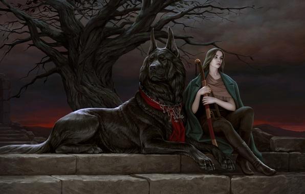 Картинка взгляд, девушка, закат, ветки, поза, дерево, животное, собака, арт, сидит