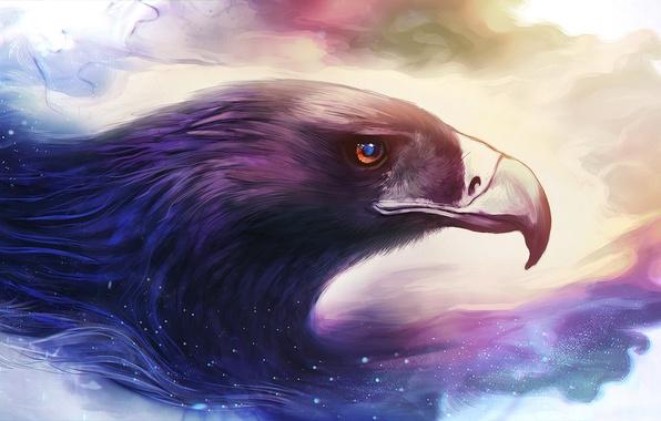Картинка птица, орел, клюв, art