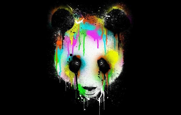 Картинка глаза, цвета, фон, абстракции, панда