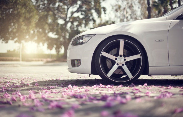 Картинка асфальт, макро, блики, весна, лепестки, колесо, BMW, нос, белая, диски, 3Series, боке, передняя часть
