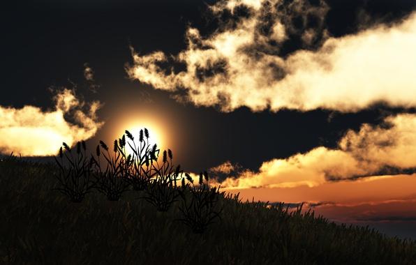 Картинка трава, солнце, облака, закат, природа, холм, арт, силуэты
