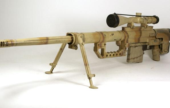 Картинка США, снайперская винтовка, Chey, m200, Tac, .408 CheyTac, Intervention