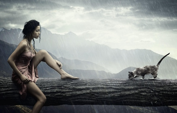 Картинка кошка, девушка, дождь, rain