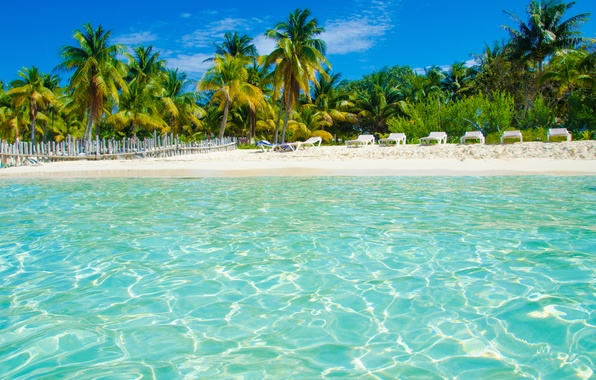 Обои картинки фото тропики, море, пляж ...: www.goodfon.ru/wallpaper/tropiki-more-plyazh-palmy-2510.html