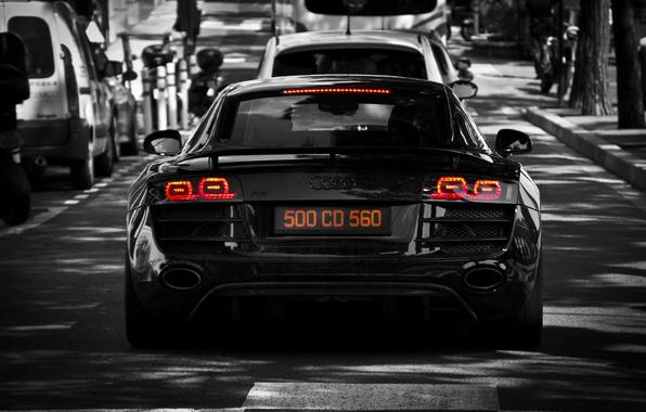 Картинка деревья, машины, Audi, ауди, улица, черный, light, black, cars, tree, street, back