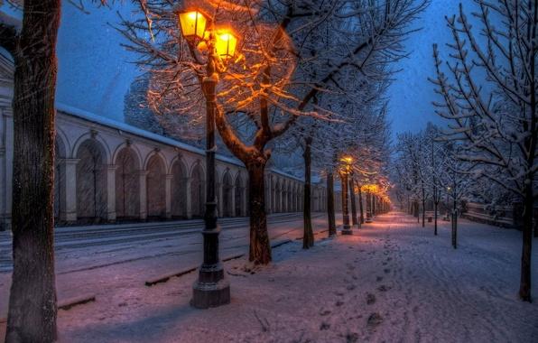 Картинка зима, дорога, снег, деревья, природа, lights, парк, путь, улица, прогулка, road, trees, nature, park, winter, …