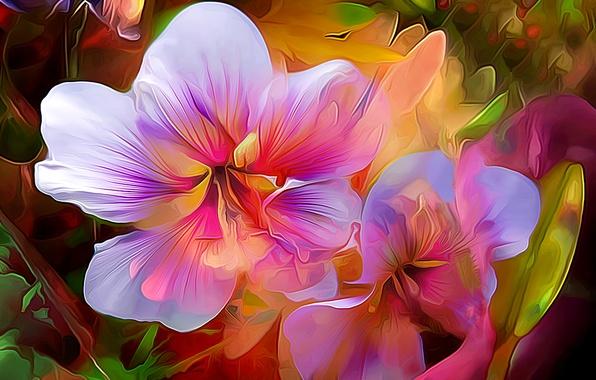 Картинка макро, линии, цветы, природа, лепестки