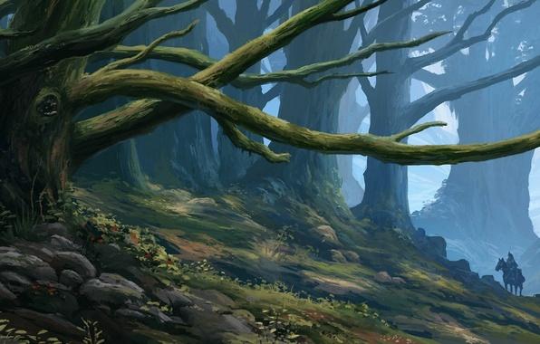 Картинка лес, арт, всадник, дереьвя