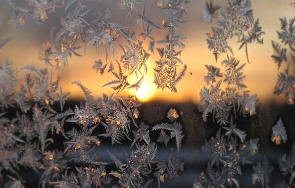 Картинка холод, зима, стекло, макро, закат, мороз