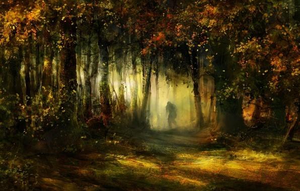 Картинка деревья, листва, тропа, Лес, силуэт