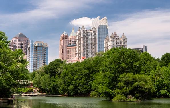 Картинка деревья, озеро, парк, USA, trees, Park, lake, Georgia, Midtown, Piedmont, Атланта, Джордия, Atlanta