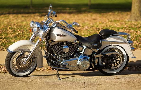 Картинка дизайн, фон, мотоцикл, байк, Harley-Davidson