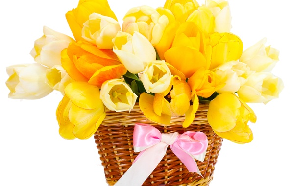 Картинка корзина, букет, желтые, тюльпаны, бант