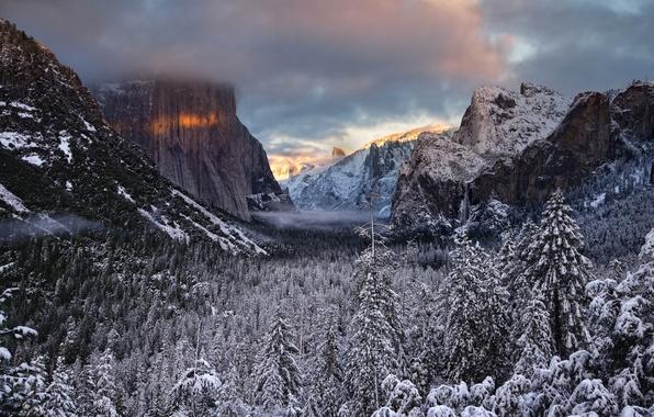 Картинка зима, лес, облака, снег, скалы, ель, долина, хвойные