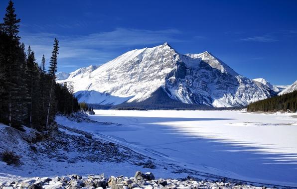 Картинка лед, зима, небо, снег, деревья, горы, озеро, ель
