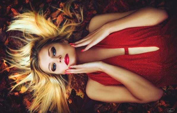 Картинка осень, взгляд, листья, девушка, лицо, руки, макияж, платье, прическа, блондинка, лежит, в красном, на земле