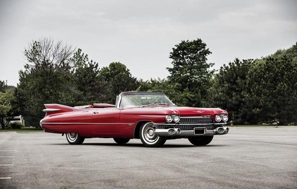 Картинка Cadillac, кадиллак, Convertible, 1959, Sixty-Two