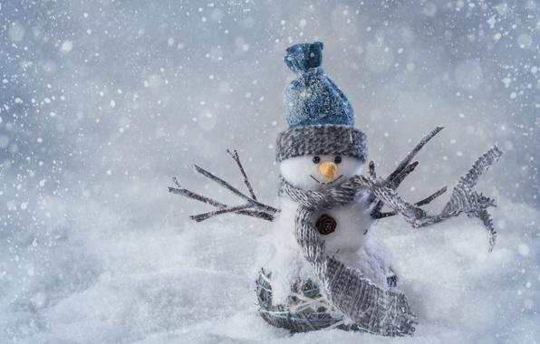 Картинка зима, снег, деревья, пейзаж, горы, природа, дом, новый год, рождество, снегови