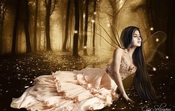 Картинка лес, взгляд, девушка, деревья, лицо, волосы, крылья, огоньки, платье, фея, лежит, длинные