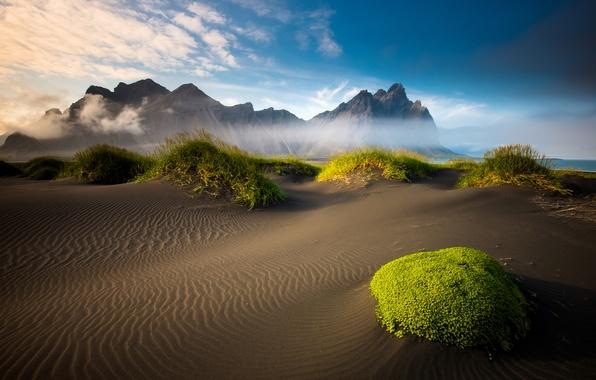 Картинка песок, море, пляж, облака, горы, мох, Исландия