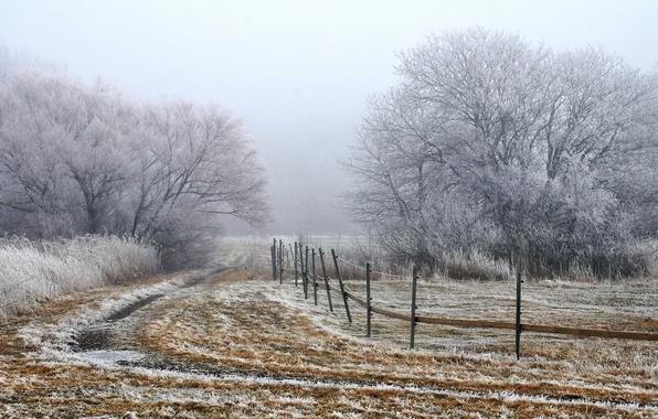 Картинка поле, пейзаж, туман, забор, утро