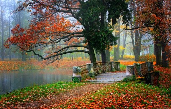 Картинка осень, лес, небо, листья, вода, деревья, горы, природа, парк, река, colors, colorful, forest, river, trees, …