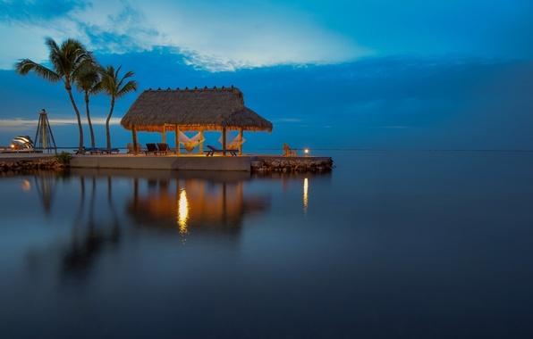 Картинка пальмы, океан, вечер, Флорида, водная гладь, Florida, Атлантический океан, Atlantic Ocean, Florida Keys, остров Ки-Ларго, …
