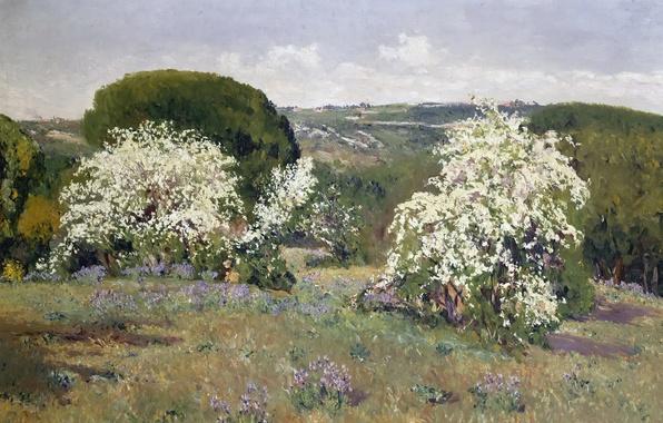 Картинка деревья, пейзаж, цветы, холмы, картина, весна, кусты, Aureliano de Beruete y Moret, Цветение Боярышника