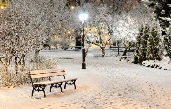 Картинка зима, свет, снег, деревья, скамейка, природа, парк, вечер, лавочка, фонари, лавка, скамья