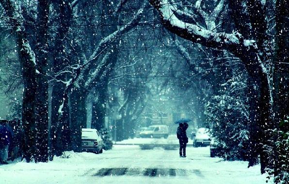 Картинка дорога, девушка, снег, деревья, фото, фон, настроение, обои, чувства, поцелуй, мороз, пара, парень, зимы