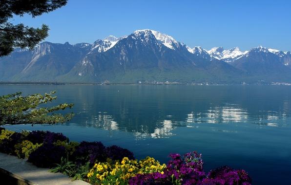 Картинка небо, вода, цветы, горы, озеро, отражение, Швейцария, Женева