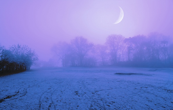 Картинка небо, снег, деревья, ночь, туман, луна, поляна, Зима, сиреневое