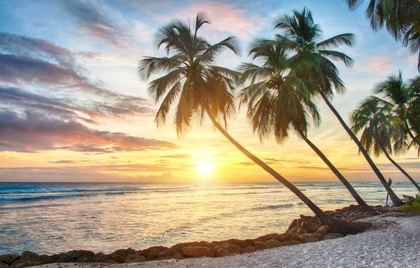 Песок пляж море картинки