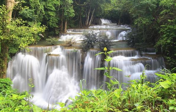 Картинка лес, деревья, река, камни, водопад, поток, джунгли, Thailand, таиланд, каскад