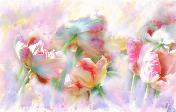 Фото красивые нежные цветы