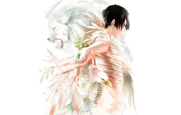 Картинка птица, лев, перья, кости, парень, art