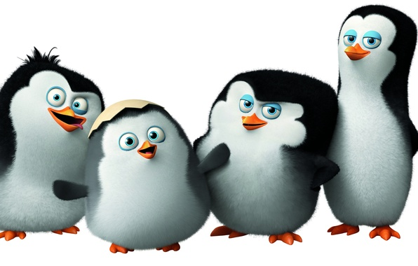 Фото обои Classified, пингвины Мадагаскара, Penguins of Madagascar, мультфильм