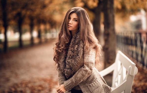 Картинка осень, взгляд, листья, девушка, деревья, парк, милая, модель, шарф, лавочка, веснушки, шатенка, прелесть, кофта, аллея, …