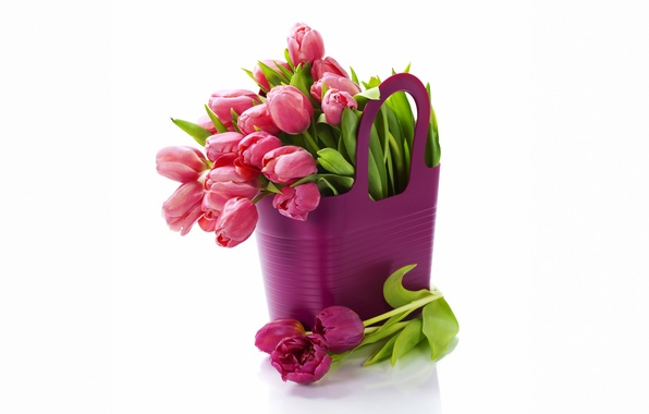 Картинка цветы, букет, тюльпаны, fresh, flowers, tulips, purple, bouquet