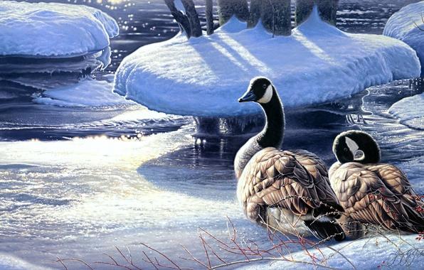 Картинка зима, снег, река, лёд, живопись, гуси, Winter Thaw, пара гусей, Jay Johnson