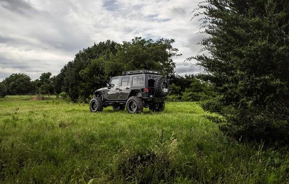 Картинка джип, jeep, wrangler, вранглер, unlimited