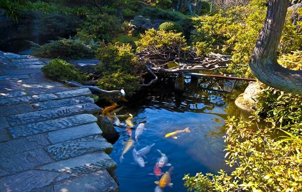 Japanese Gardens  Japanese Language Blog