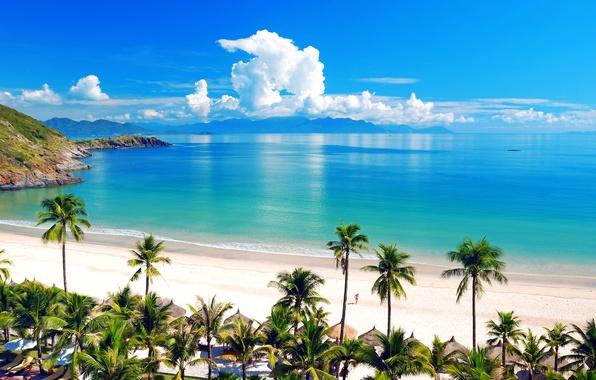 Картинка море, пляж, небо, девушка, облака, горы, тропики, пальмы, океан, отдых, берег
