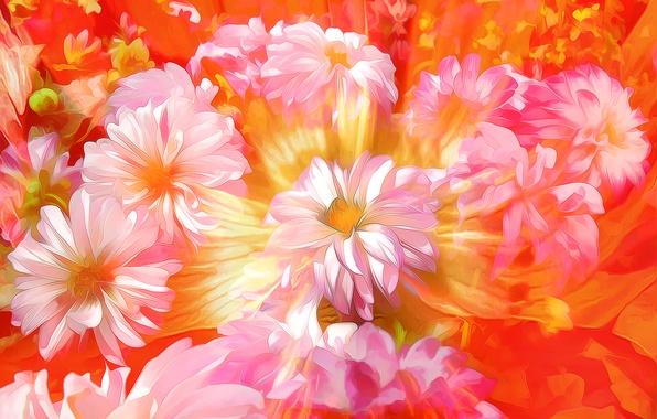 Картинка макро, цветы, лепестки, сад