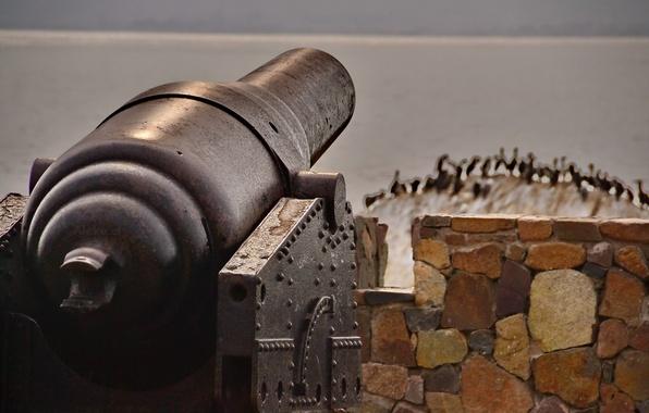Картинка оружие, пушка, орудие