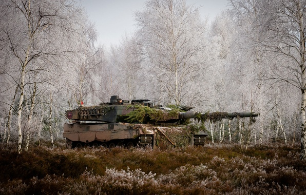 Картинка лес, трава, деревья, танк, боевой, Leopard 2A6M