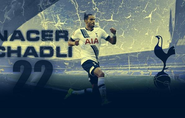 Картинка Football, Spurs, belgium, Tottenham Hotspur, nacer, chadli
