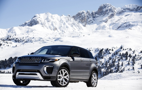 Картинка car, снег, деревья, гора, склон, Land Rover, Range Rover, mountain, snow, Evoque, Autobiography