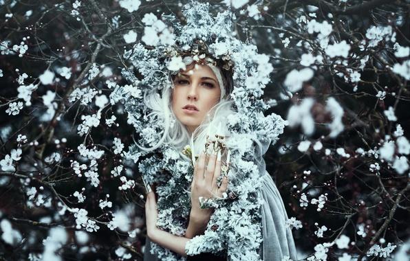 Картинка девушка, цветы, ветки, настроение, весна, цветение, венок, Bella Kotak, Kerry-Ann