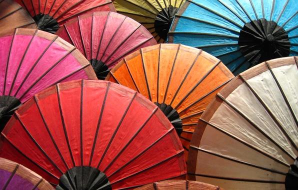Картинка цвета, краски, радуга, зонты, палитра